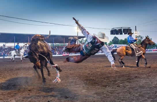 Chief Joseph days bronc rider